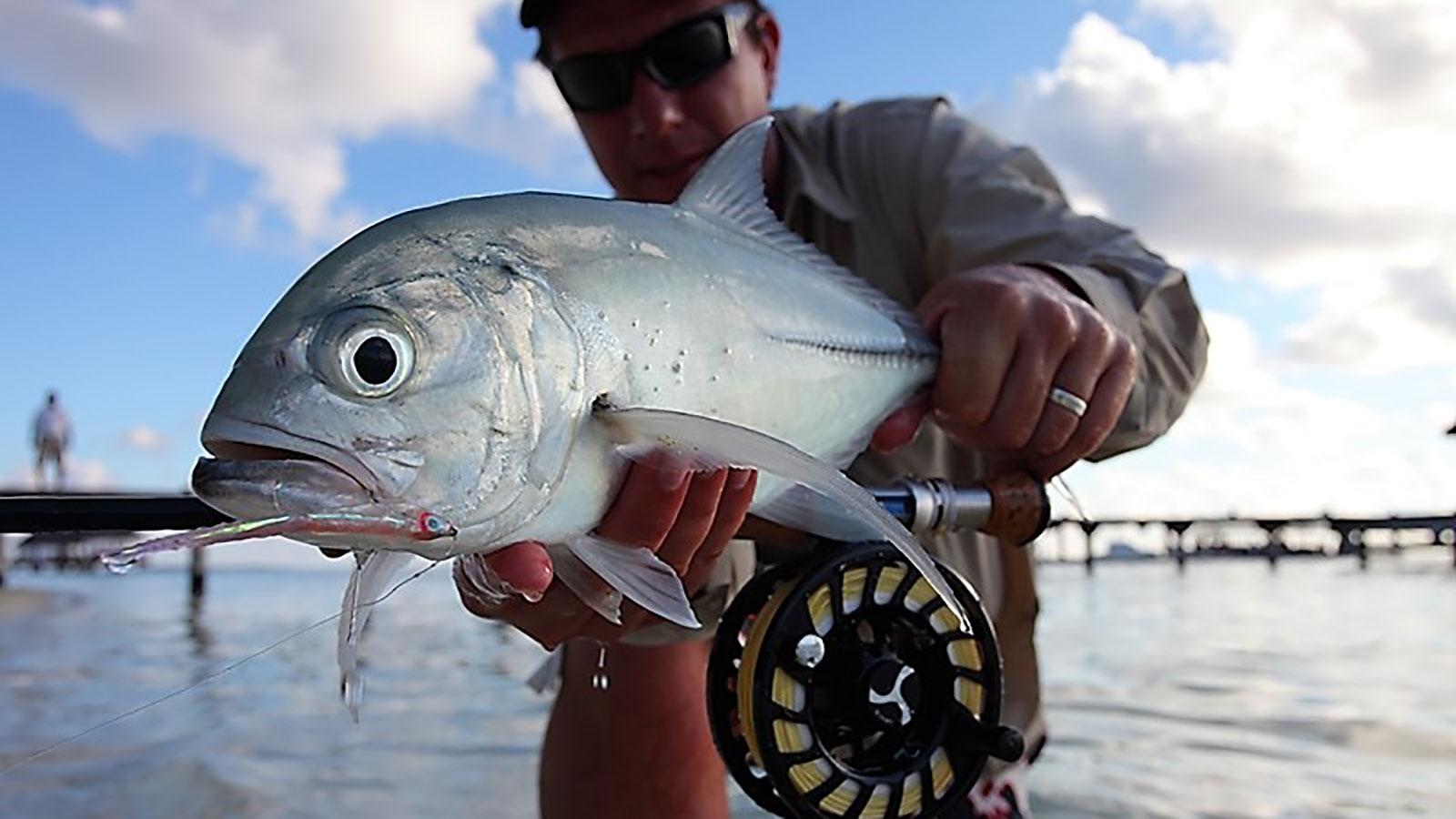 Рубрика: Рыбалка